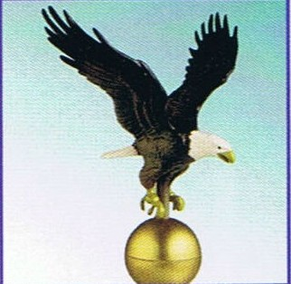 "12"" Natural Eagle"